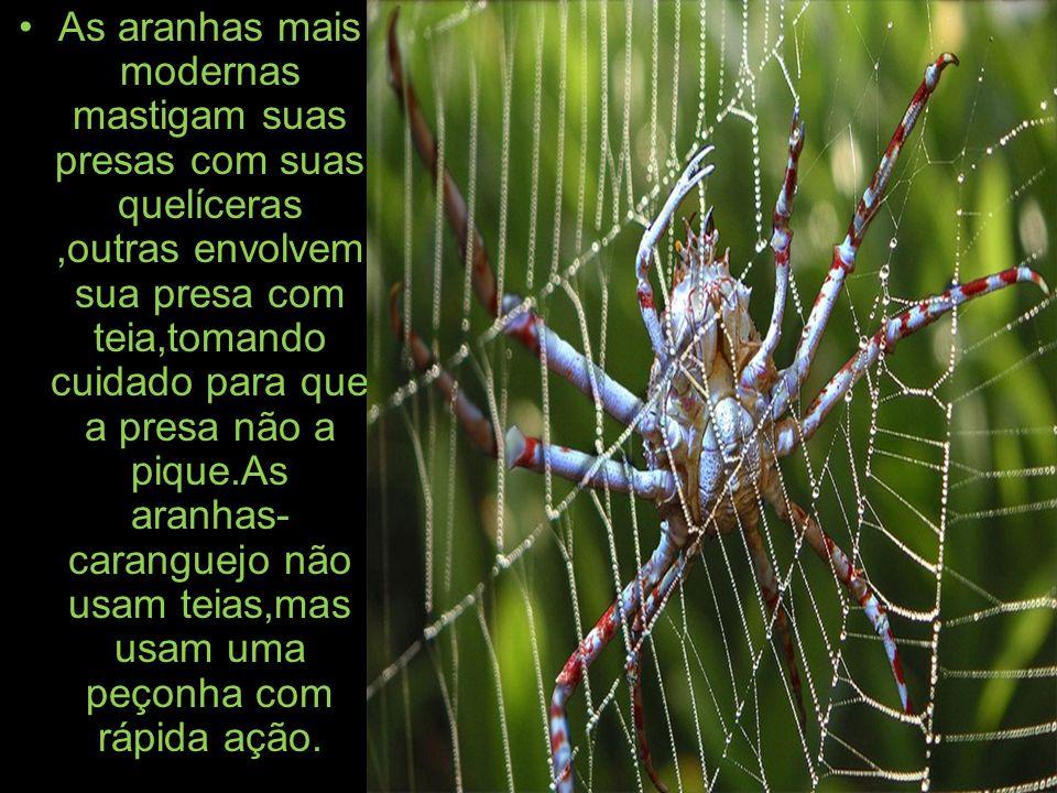 As aranhas mais modernas mastigam suas presas com suas quelíceras ,outras envolvem sua presa com teia,tomando cuidado para que a presa não a pique.As aranhas-caranguejo não usam teias,mas usam uma peçonha com rápida ação.