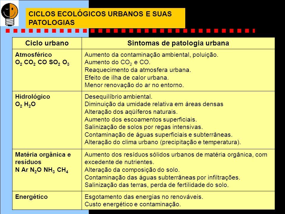 Sintomas de patologia urbana