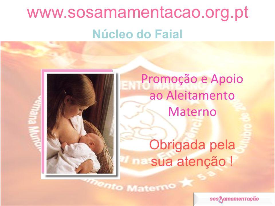 Promoção e Apoio ao Aleitamento Materno