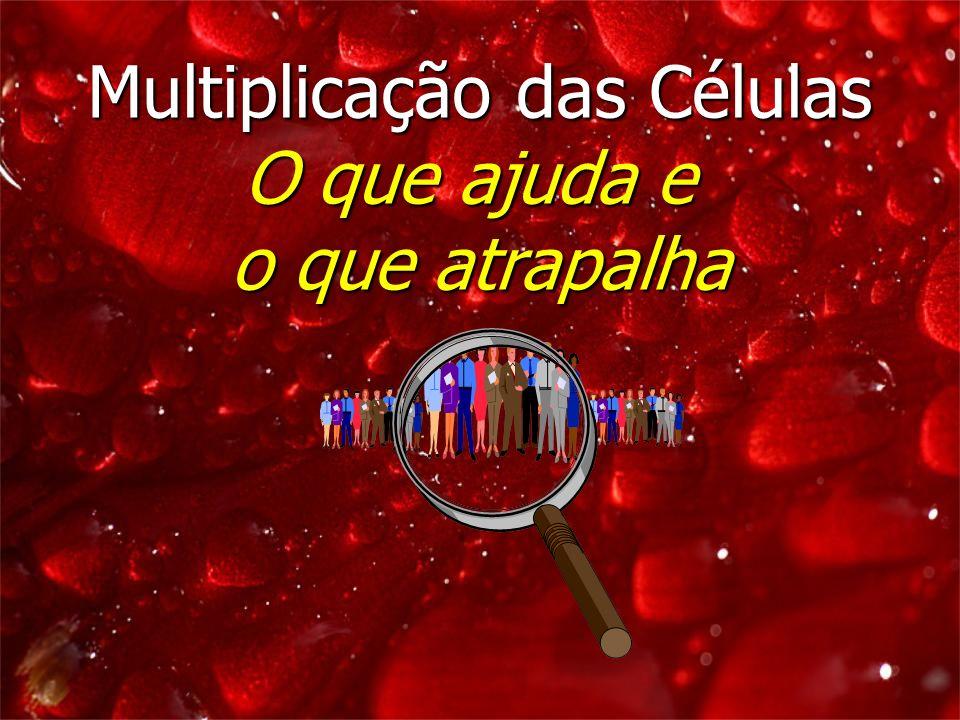 Multiplicação das Células