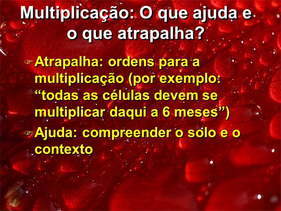 Multiplicação: O que ajuda e o que atrapalha