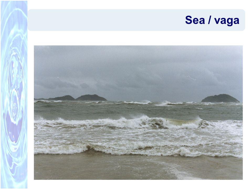 Sea / vaga