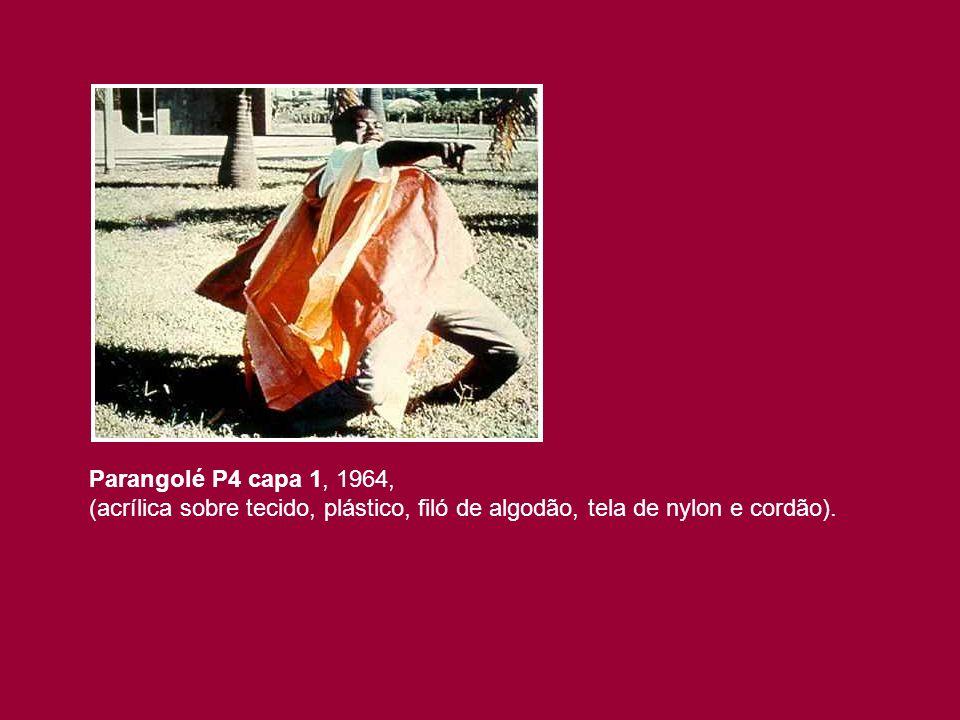 Parangolé P4 capa 1, 1964, (acrílica sobre tecido, plástico, filó de algodão, tela de nylon e cordão).