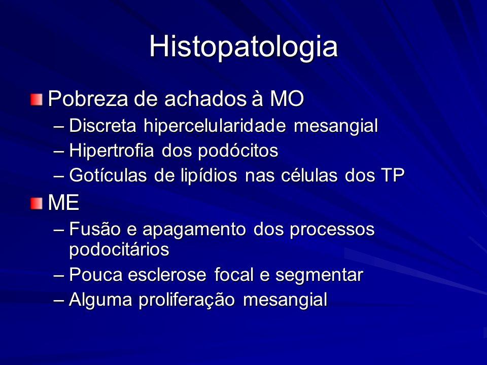 Histopatologia Pobreza de achados à MO ME