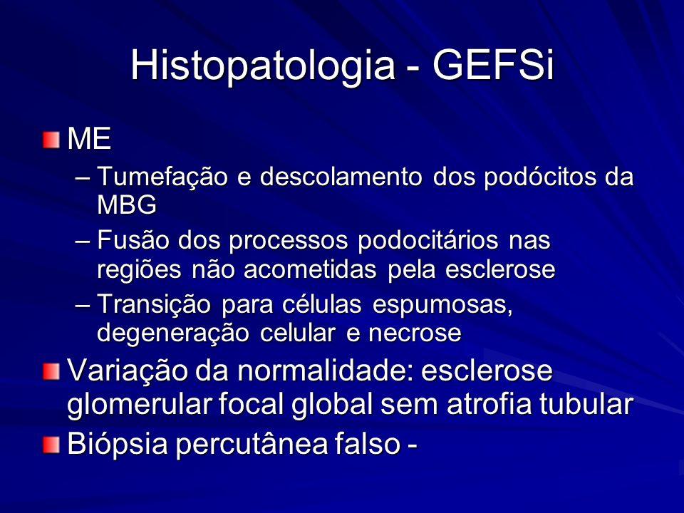 Histopatologia - GEFSi