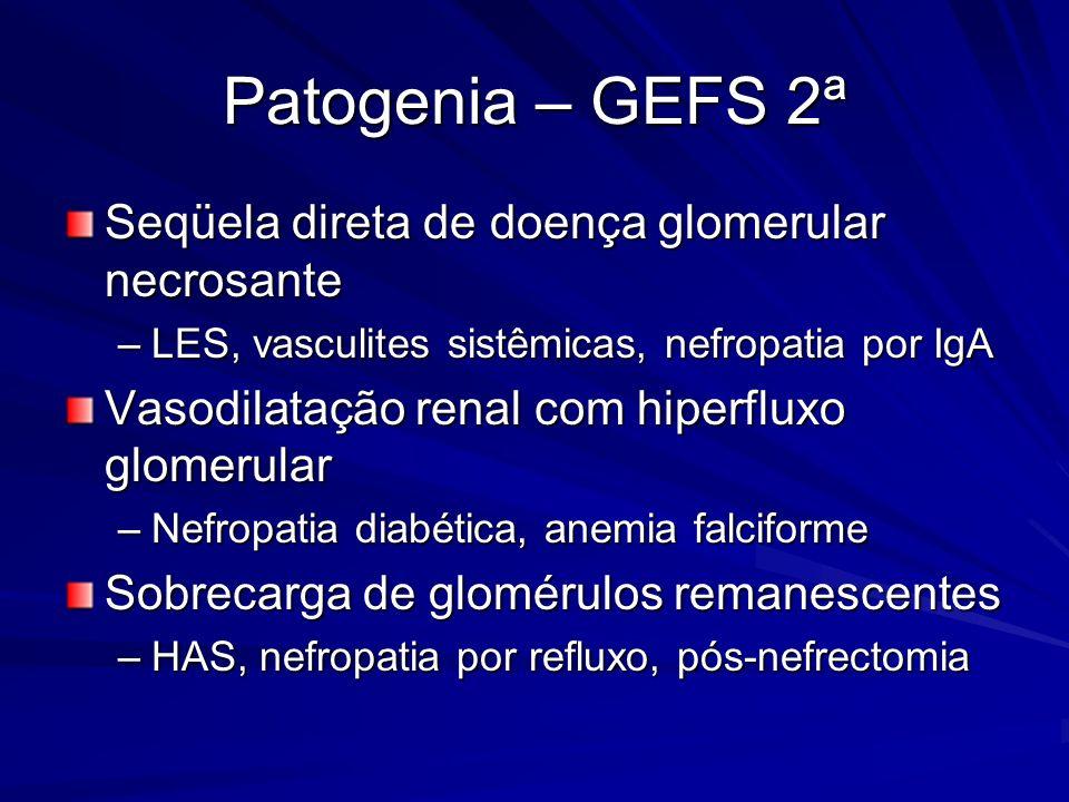 Patogenia – GEFS 2ª Seqüela direta de doença glomerular necrosante