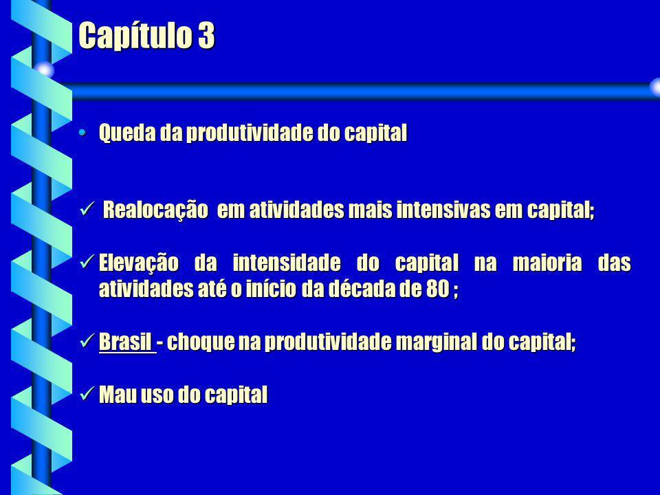 Capítulo 3 Queda da produtividade do capital
