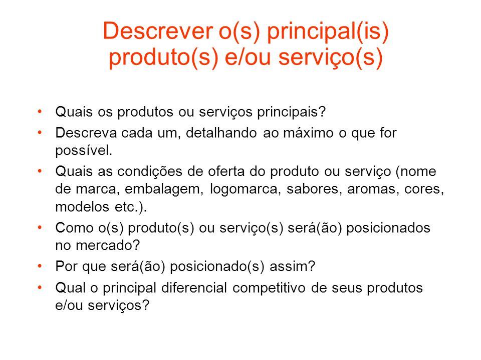 Descrever o(s) principal(is) produto(s) e/ou serviço(s)