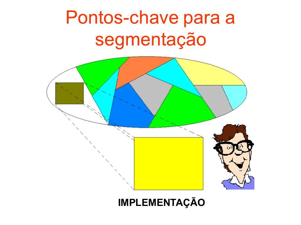 Pontos-chave para a segmentação