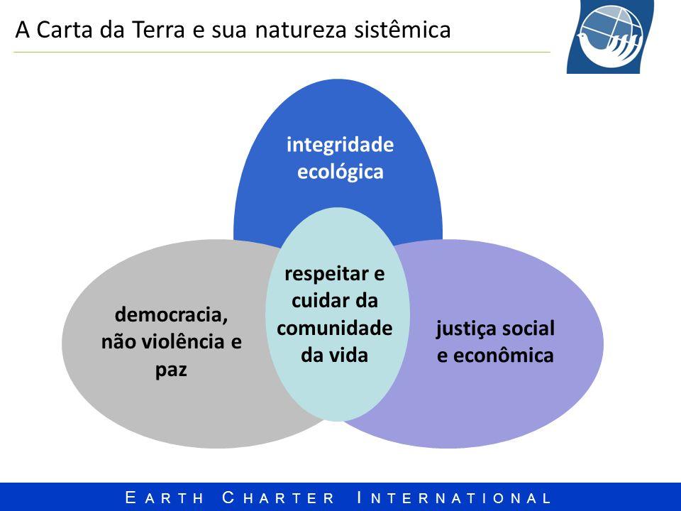 A Carta da Terra e sua natureza sistêmica