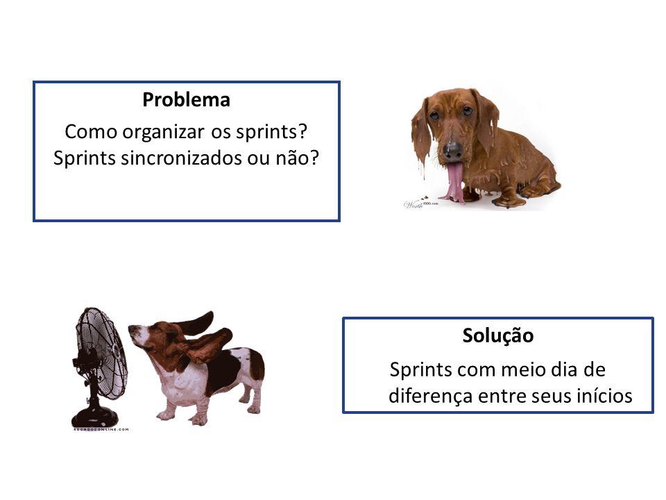 Problema Como organizar os sprints Sprints sincronizados ou não