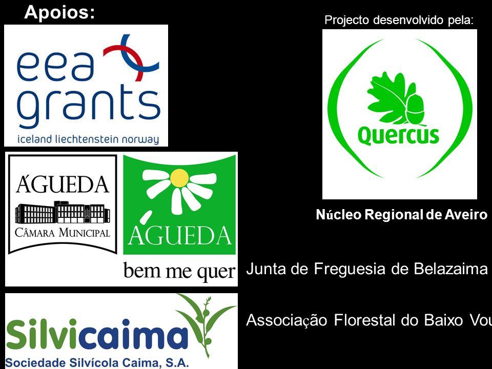 Apoios: Junta de Freguesia de Belazaima