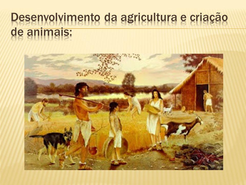 Desenvolvimento da agricultura e criação de animais: