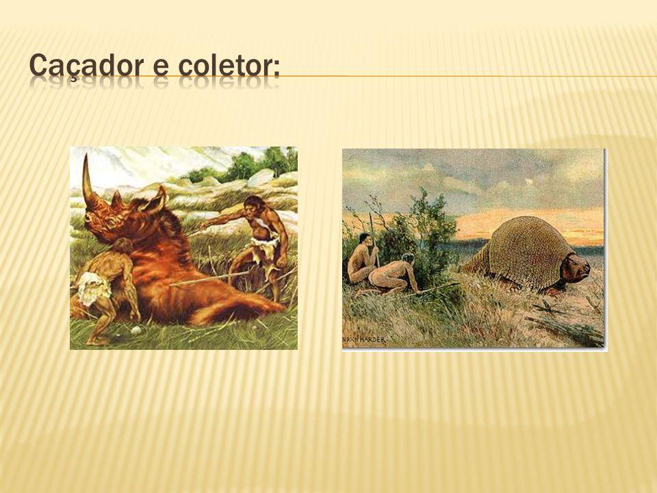 Caçador e coletor: