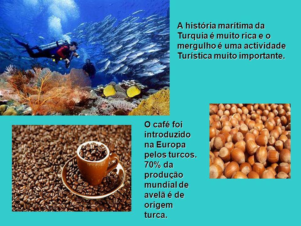 A história marítima da Turquia é muito rica e o mergulho é uma actividade