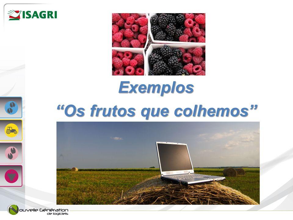 Exemplos Os frutos que colhemos