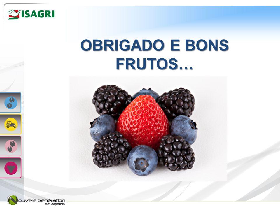 OBRIGADO E BONS FRUTOS…