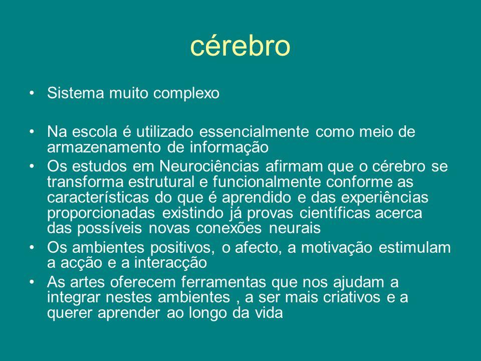 cérebro Sistema muito complexo