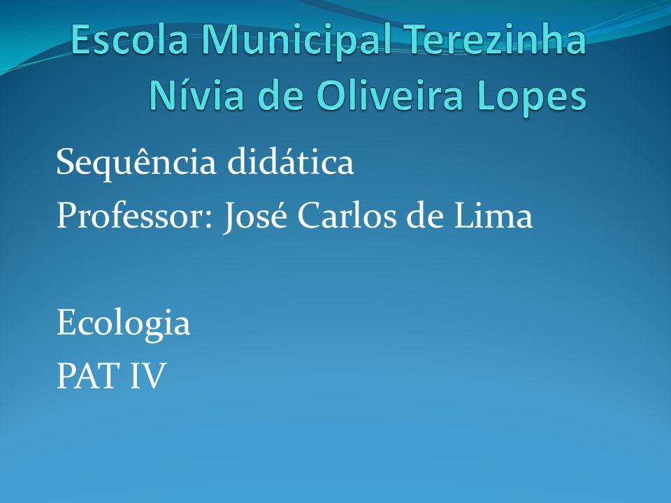 Escola Municipal Terezinha Nívia de Oliveira Lopes
