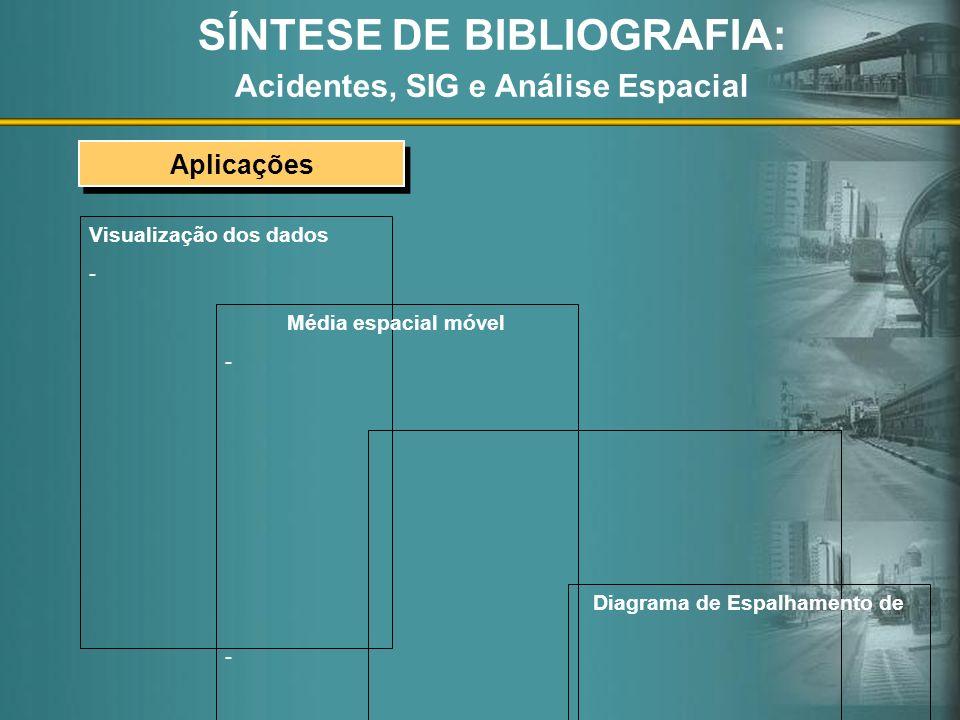 SÍNTESE DE BIBLIOGRAFIA: Acidentes, SIG e Análise Espacial
