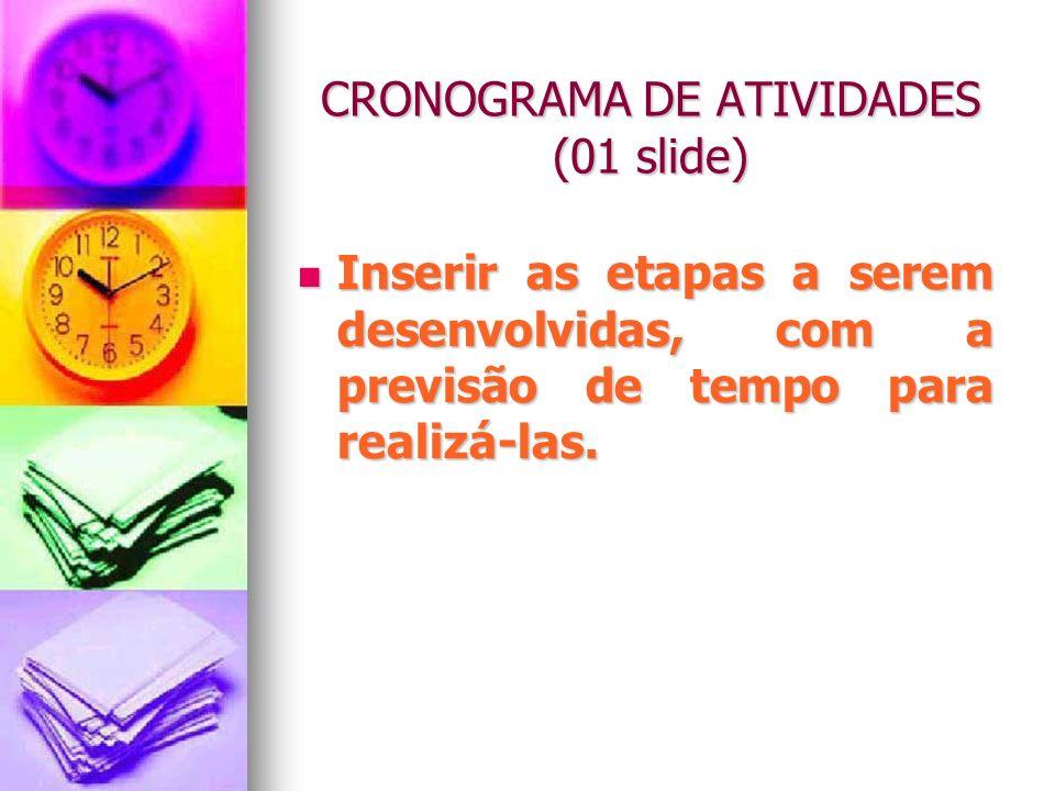 CRONOGRAMA DE ATIVIDADES (01 slide)