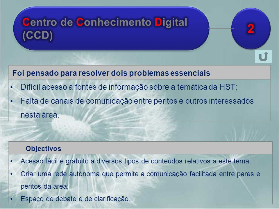 2 Centro de Conhecimento Digital (CCD)