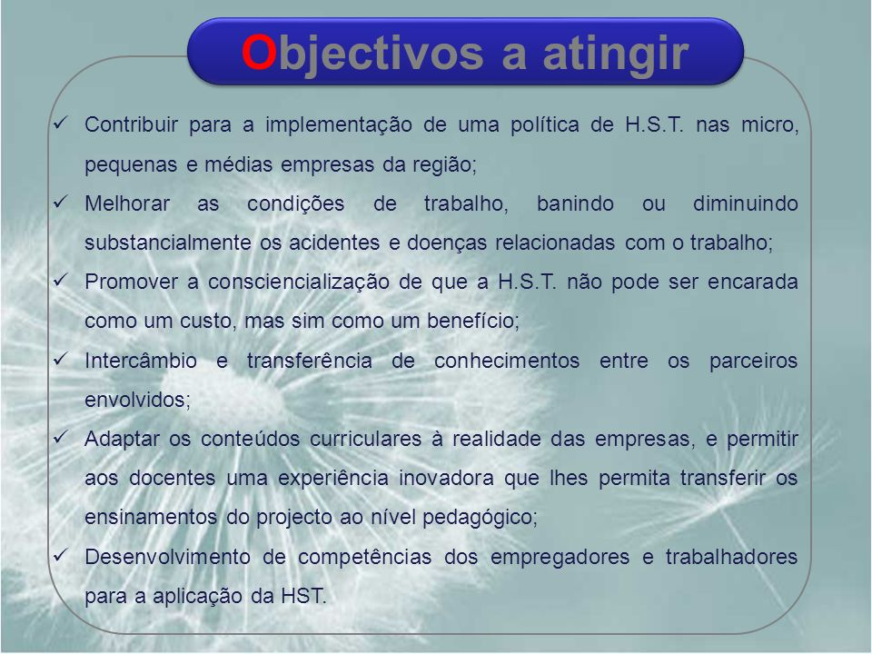 Objectivos a atingir Contribuir para a implementação de uma política de H.S.T. nas micro, pequenas e médias empresas da região;