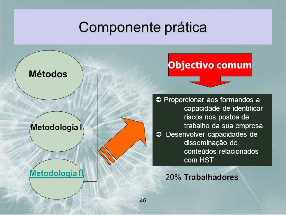 Componente prática Objectivo comum Métodos Metodologia I