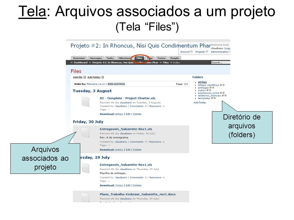 Tela: Arquivos associados a um projeto (Tela Files )