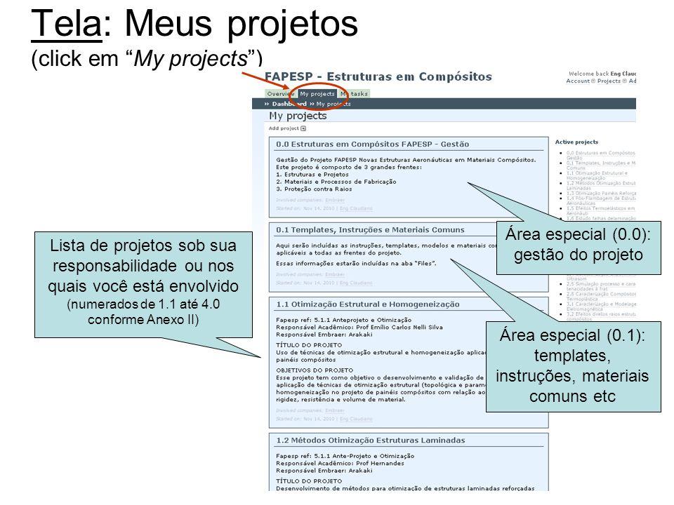 Tela: Meus projetos (click em My projects )