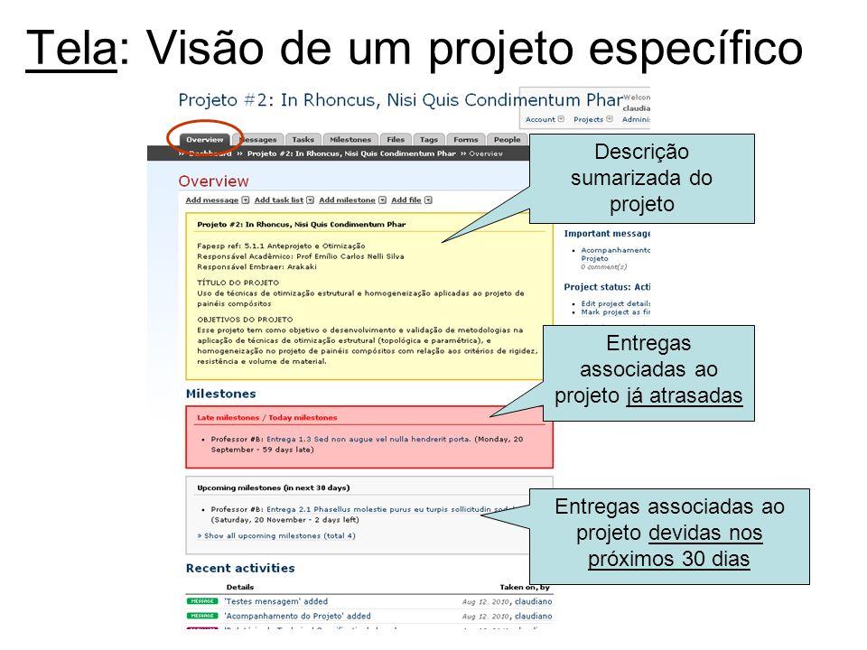Tela: Visão de um projeto específico