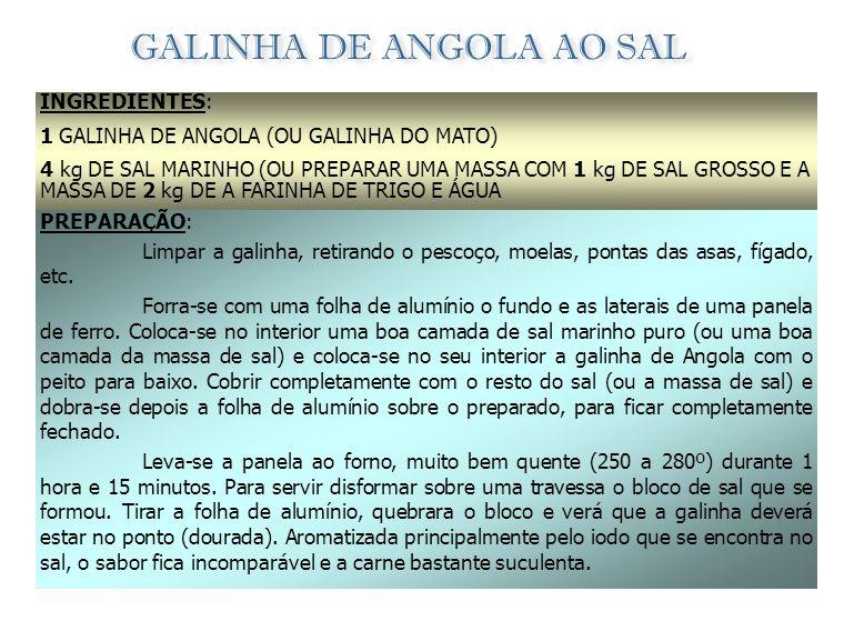 GALINHA DE ANGOLA AO SAL