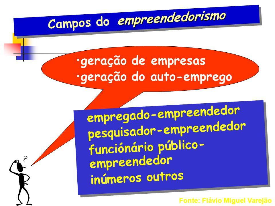 Campos do empreendedorismo
