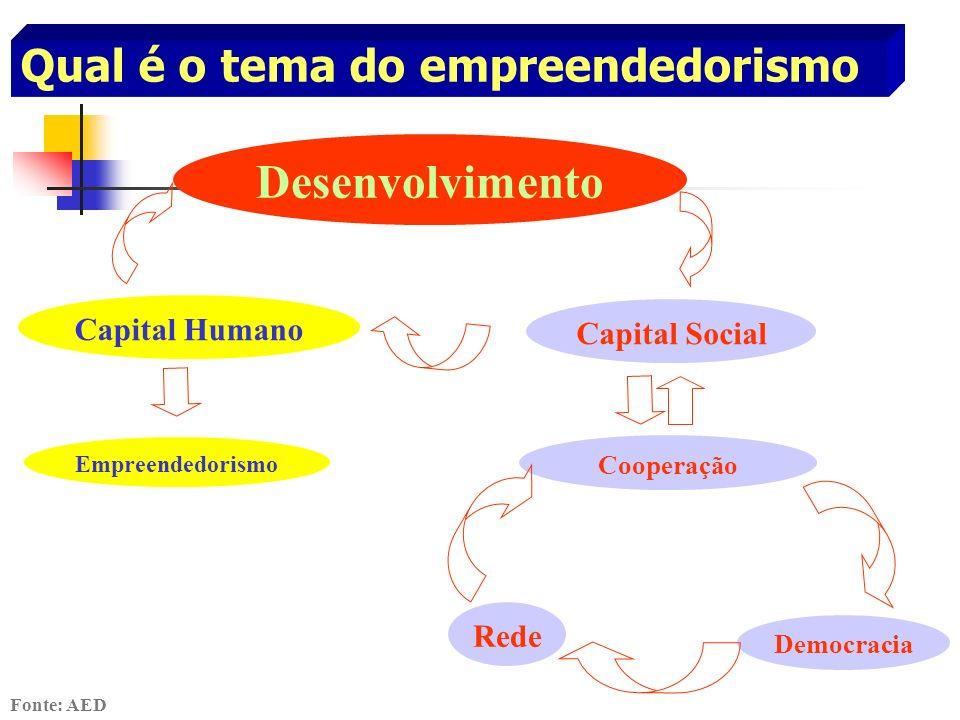 Qual é o tema do empreendedorismo