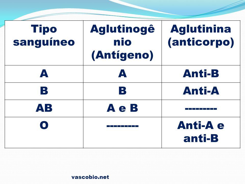Tipo sanguíneo Aglutinogênio (Antígeno) Aglutinina (anticorpo)