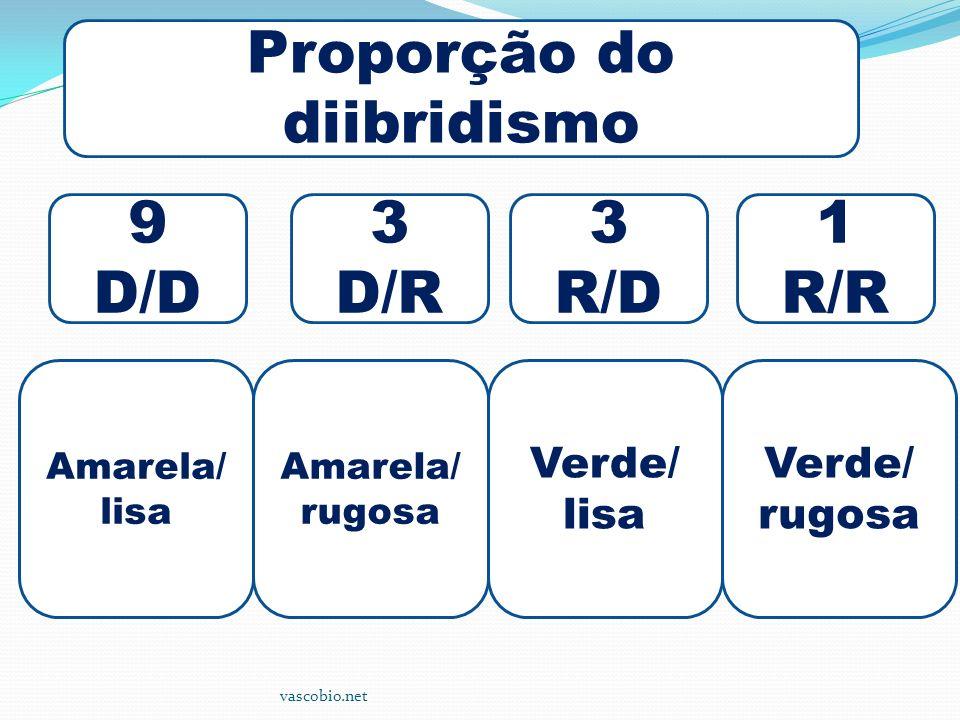 Proporção do diibridismo