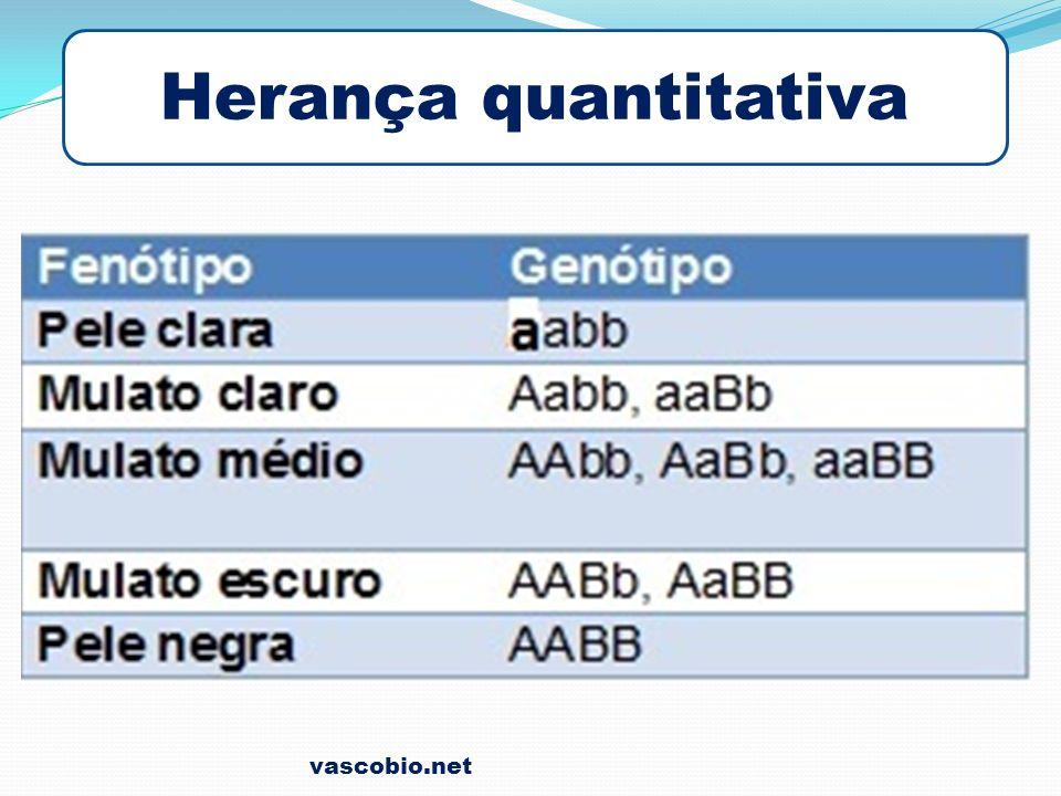 Herança quantitativa vascobio.net