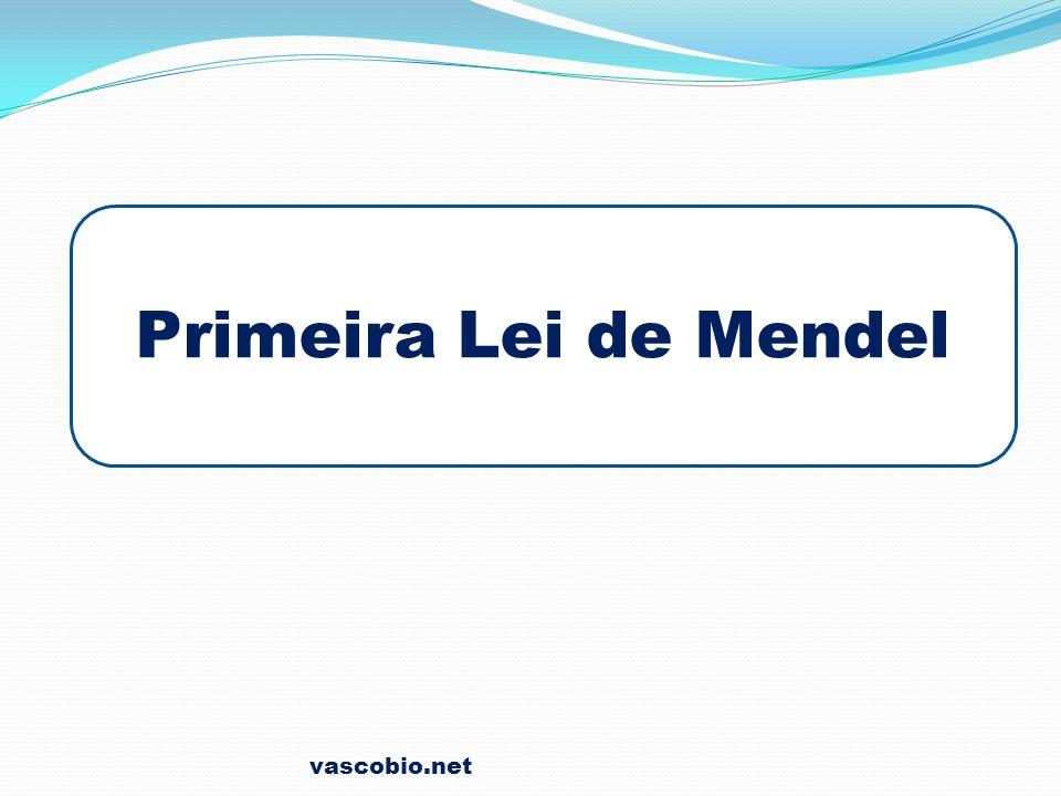 Primeira Lei de Mendel vascobio.net