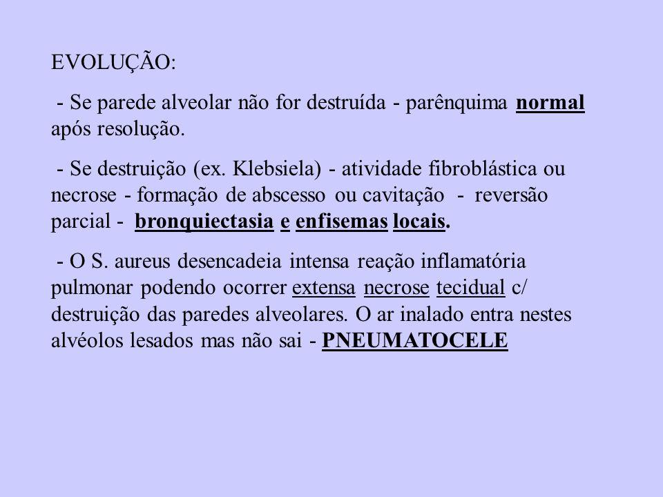 EVOLUÇÃO: - Se parede alveolar não for destruída - parênquima normal após resolução.