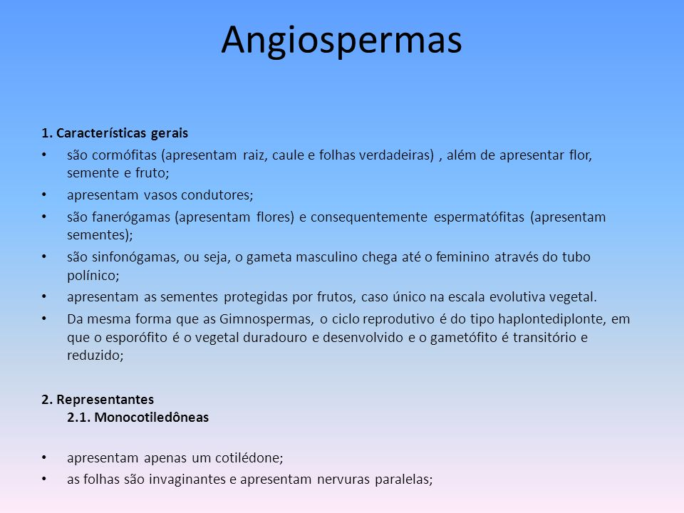 Angiospermas 1. Características gerais