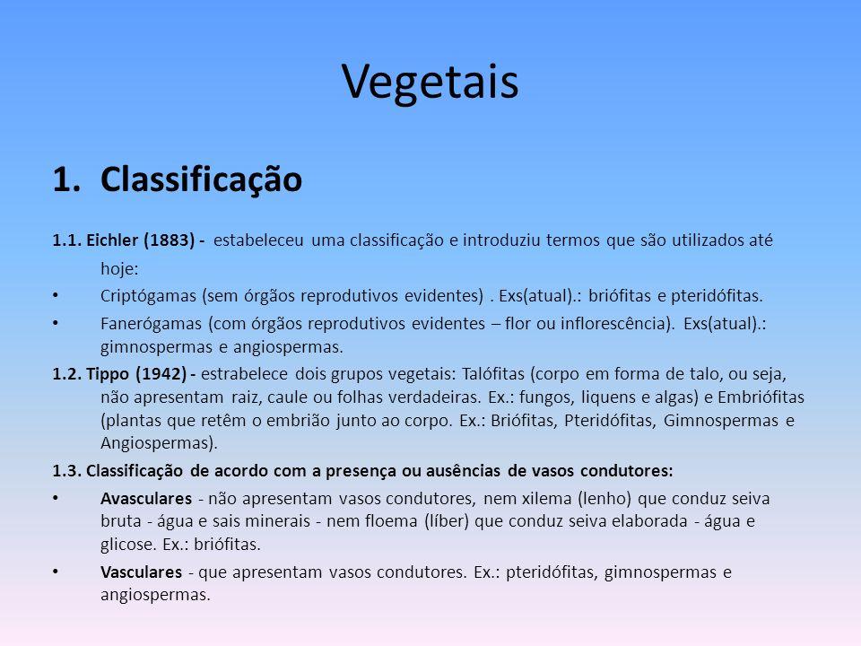 Vegetais Classificação