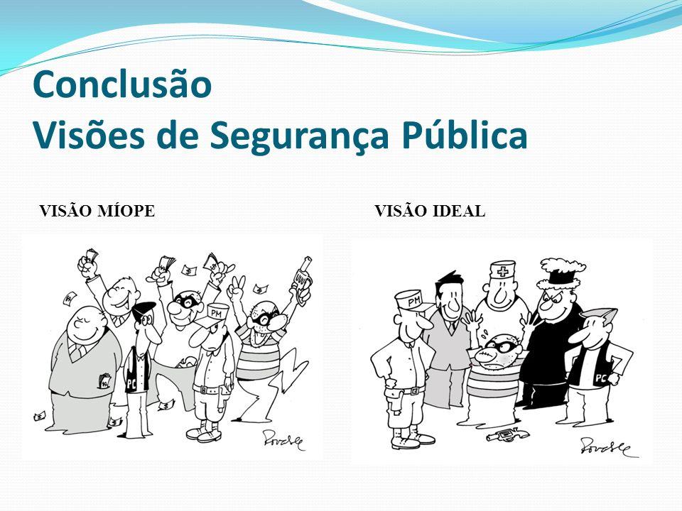 Conclusão Visões de Segurança Pública