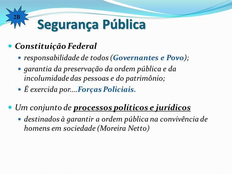 Segurança Pública Constituição Federal