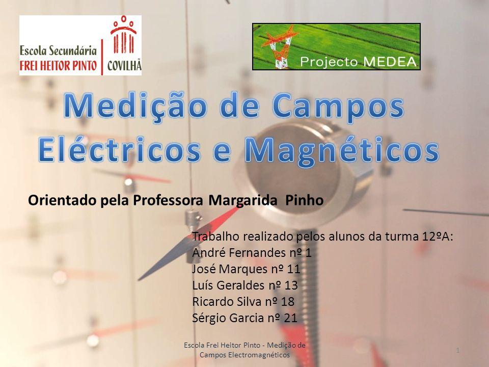 Eléctricos e Magnéticos
