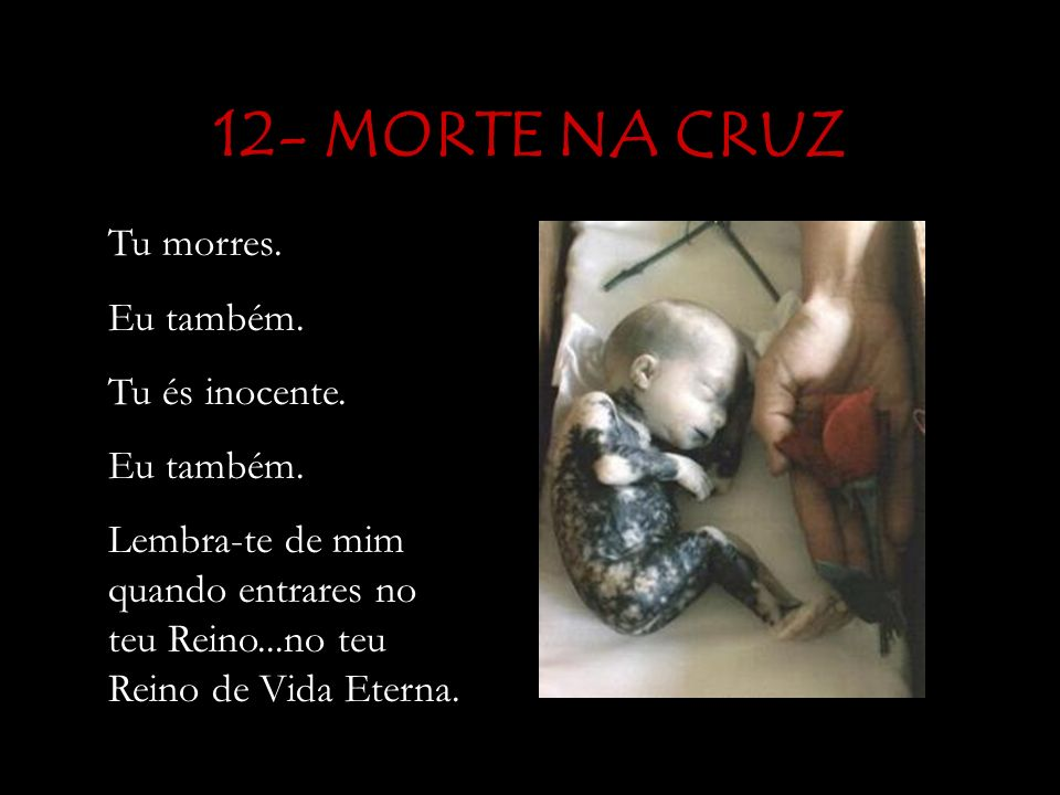 12- MORTE NA CRUZ Tu morres. Eu também. Tu és inocente.