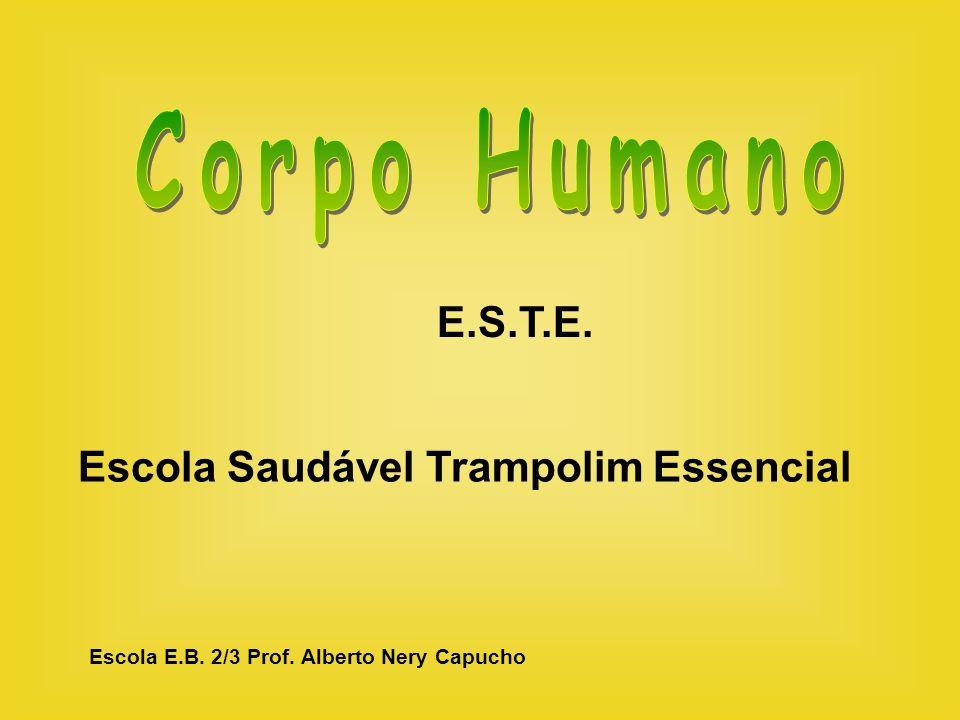 Corpo Humano E.S.T.E. Escola Saudável Trampolim Essencial