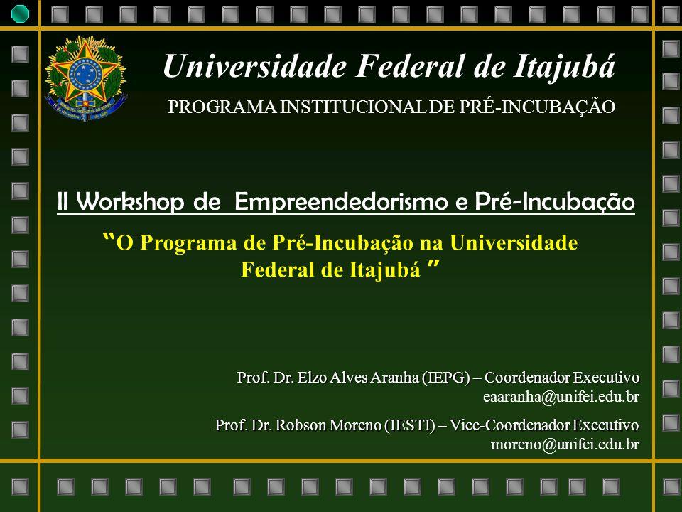Universidade Federal de Itajubá