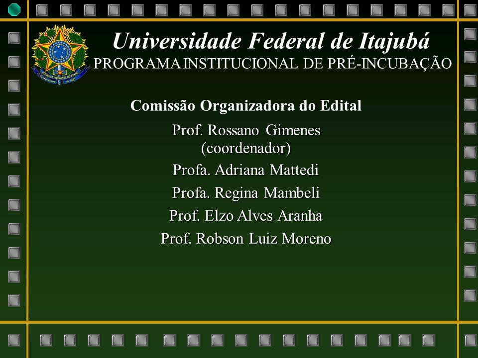 Universidade Federal de Itajubá Comissão Organizadora do Edital