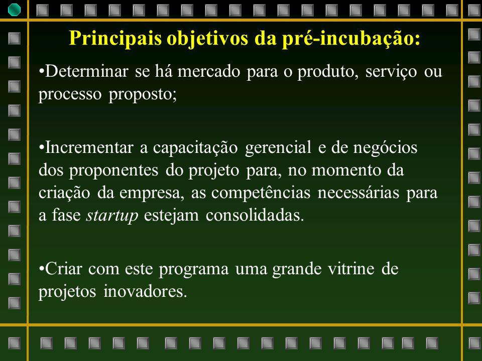 Principais objetivos da pré-incubação: