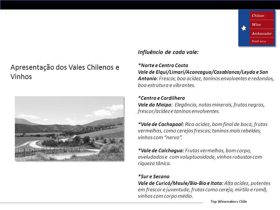 Apresentação dos Vales Chilenos e Vinhos